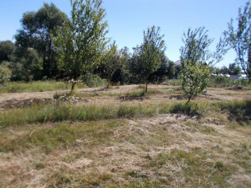 Vanzare teren in comuna Dragomiresti, sat Decindeni, jud. Dambovita